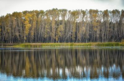 Сентябрь осень деревья пруд