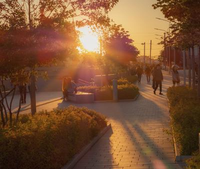 Закат на улице Город вечер огни улица дорога закат солнце