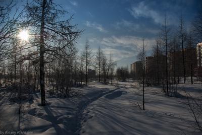 Тропинка в город Новый Уренгой зима тропинка
