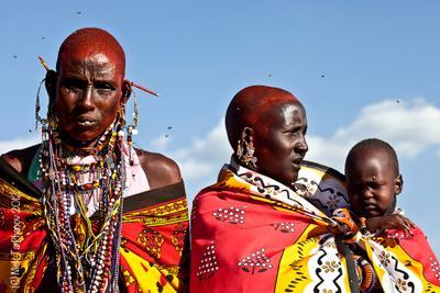 Женщины Масаи Мары Кения, путешествия, женщины, Масаи Мара