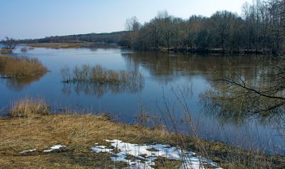 *** апрель Днепр река разлив деревья