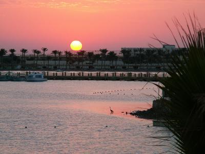 Утро в Египте Египет море солнце