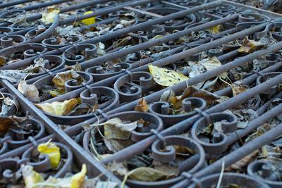 ворота старого Иерусалима иерусалим ворота осень