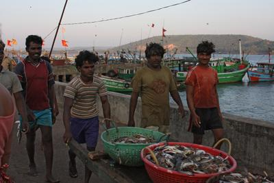 С уловом рыбаки