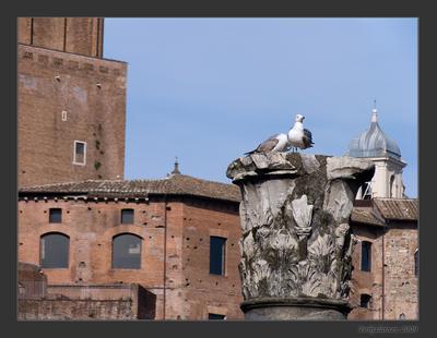 Где-то в Риме.. (кадр №3)