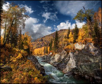 Река в Золотых Берегах #2 Алтай Осень Кумир Река Вода Горы Каньон Золото