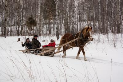Есть еще в русских селениях! зимой снег лес лошадка сани деревня деревенские жители