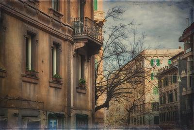 Rome 5360 Photographer Alexander Tolchinskiy
