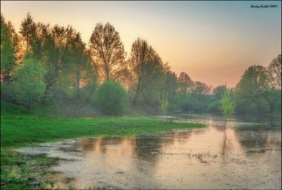 весенний разлив весна поле река разлив туман