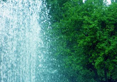 Брызги и листья Фонтан лето свежесть брызги