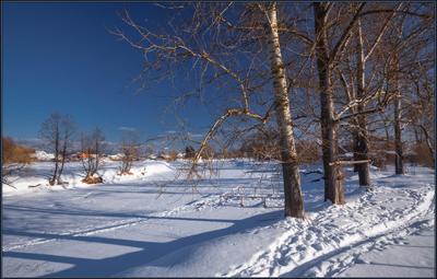 Тополя у реки ... Тополя.Река Судогда Стиральный плотик.24.02.18.Солнце.Снег.Тени.Свет