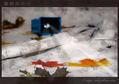 Слайды показывает осень осень, листья, проектор, слайы