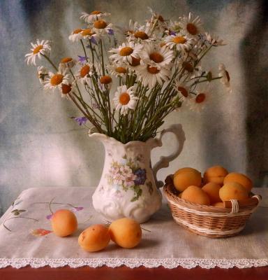 С абрикосами натюрморт