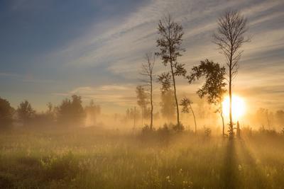 Рассвет под Новосибирском