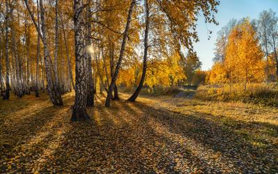 октябрь Южный-Урал