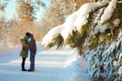 *** Поцелуй мороз солнце зима