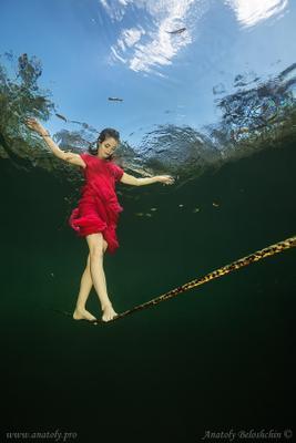 Esondido ( подводное фото ) Esondido Beloshchin underwater photo