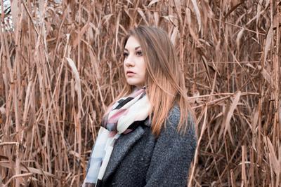Камыш девушка природа камыш портрет