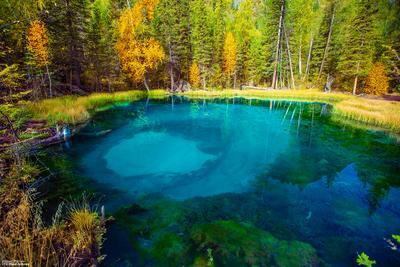 гейзерное озеро Алтай гейзерное озеро Алтай красивый Горный отдых горный алтай Акташ погода