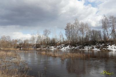 Речка Юхоть речка природа пейзаж весна
