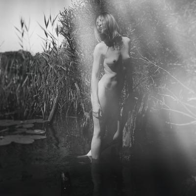 Eve (Lake)