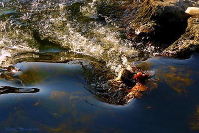 На речном перекате Сочи река вода