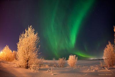 Полярное сияние и мороз -30 Полярное сияние аврора Мороз Мурманская область Апатиты Кировск Север Заполярье Хибины