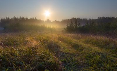 Рассвет пейзаж утро рассвет