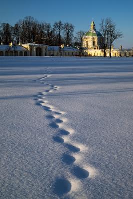 Про следы... Ораниенбаум парк зима Санкт-Петербург