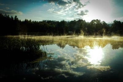 Трансформация реальности природа свет солнце просыпание