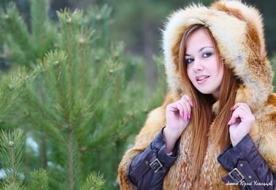 *** лес лисичка
