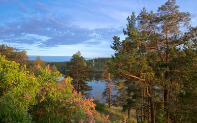 На склоне дня. Ладожское озеро