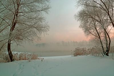Зимняя сцена. река зима туман