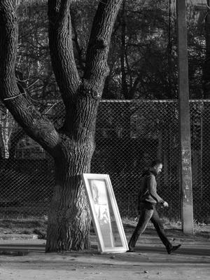 Весна! Выставляется первая рама...(С) дерево человек рама окно стекло сетка рабица