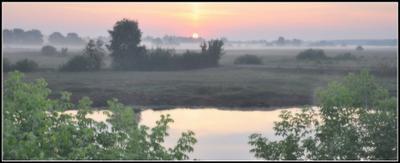 Утро нового дня... Туман рассвет