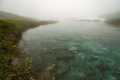 Горная река - как прозрачна и тиха Норвегия река туман лето