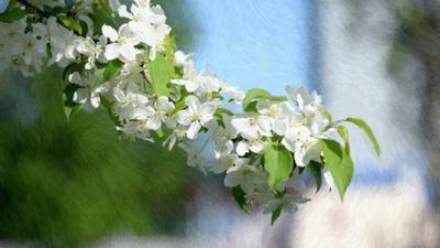 весна весна
