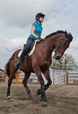 Тренировка лошадь, девушка, англия, тренировка