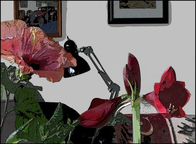 Цветы дома. Фильтр Poster Edges