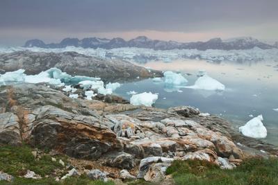 Туманное утро Гренландии Гренландия, арктика
