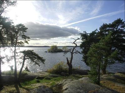 пейзаж с русалкой озеро вода девушка остров