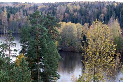 Нууксио Финляндия Nuuksio