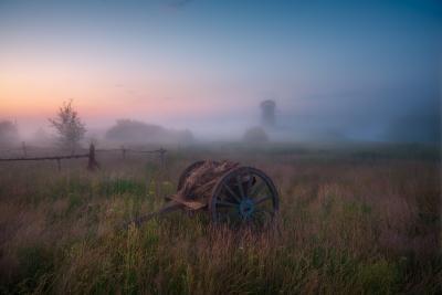 В предрассветной тишине. утро туман лето телега рассвет