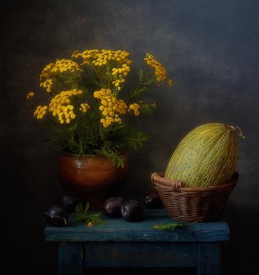 август... натюрморт цветы пижма дыня