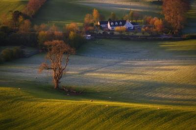 ...april rural scene... ireland nature outdoors landscape rural contryside from above morning dawn sunrise cold freeze frost meadows fields boundaries trees shades shadows cottage scenic scenery picturesque europe
