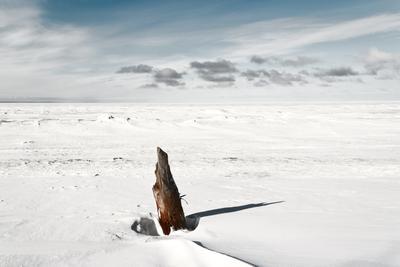 Белое море солнце снег пейзаж море