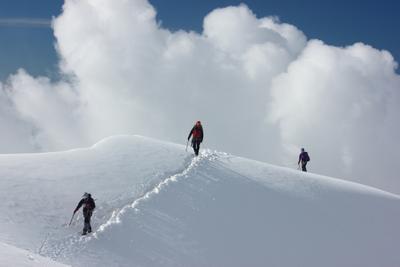 Вершина Алтай белуха горы