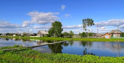 Деревенька моя... Сибирь село лето пейзаж