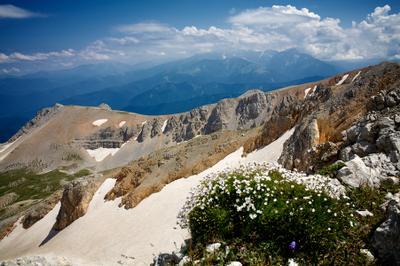 Далеко... кавказский заповедник оштен снег ледник цветы