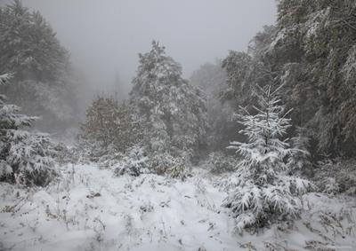 Перевал в снегу